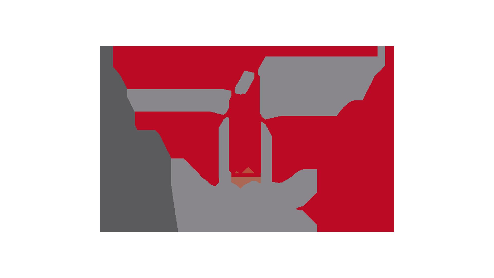 Logo Baruc 95